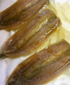 胴の短いウナギ丼8