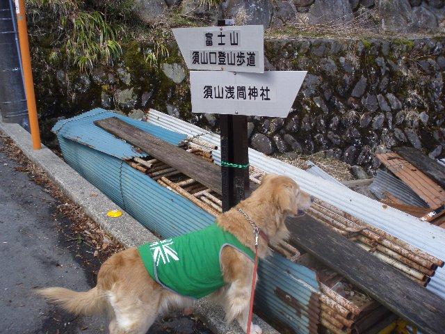 3月26日富士山須山口登山歩道 037