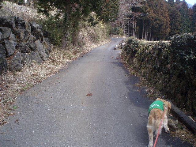 3月26日富士山須山口登山歩道 038