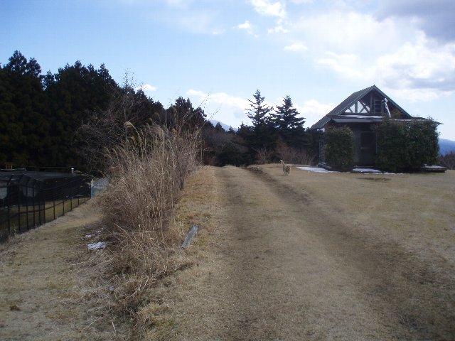 3月26日富士山須山口登山歩道 041