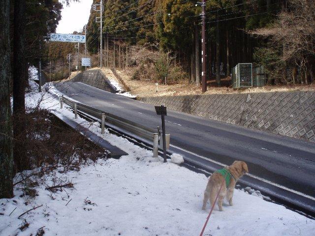 3月26日富士山須山口登山歩道 057
