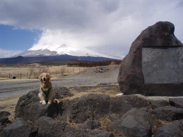 3月26日富士山須山口登山歩道 091