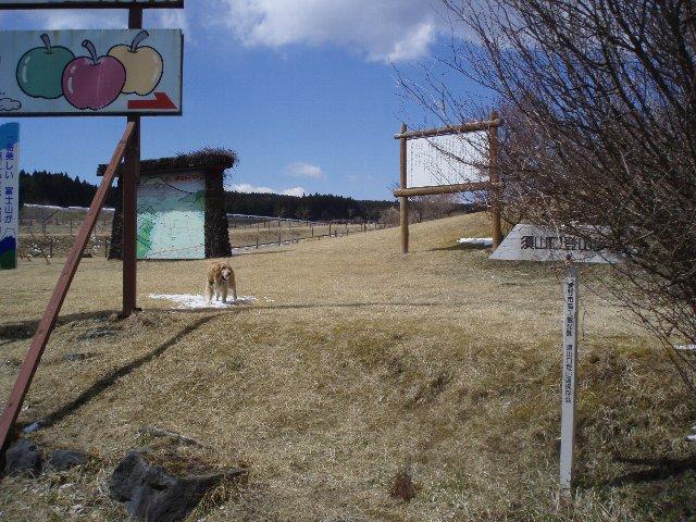 3月26日富士山須山口登山歩道 093