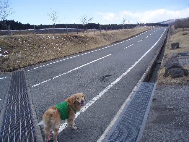 3月26日富士山須山口登山歩道 101