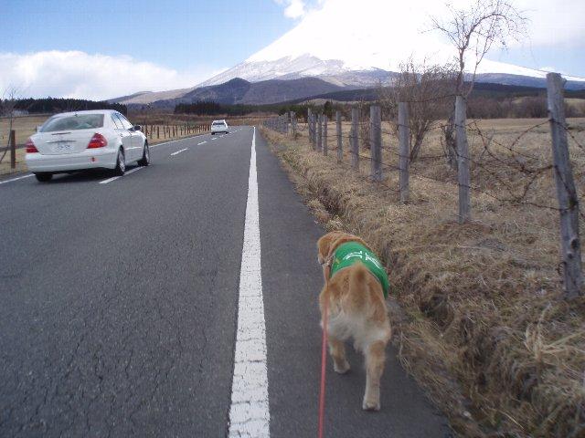 3月26日富士山須山口登山歩道 102