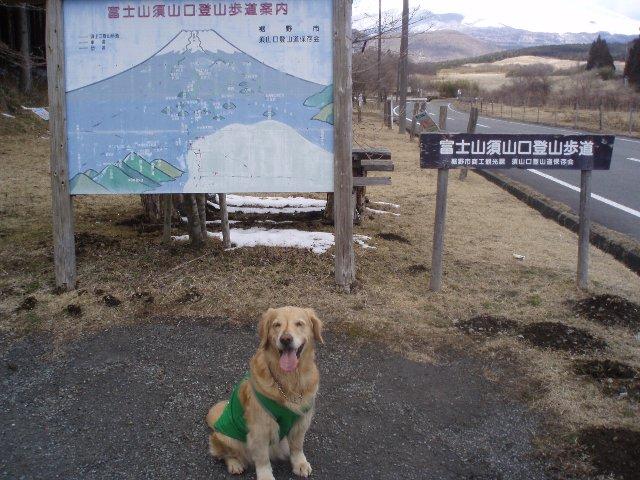 3月26日富士山須山口登山歩道 104