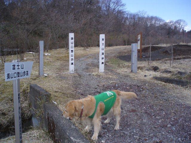 3月26日富士山須山口登山歩道 106