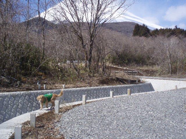 3月26日富士山須山口登山歩道 121