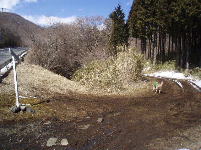 3月26日富士山須山口登山歩道 128