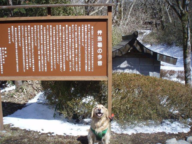 3月26日富士山須山口登山歩道 138