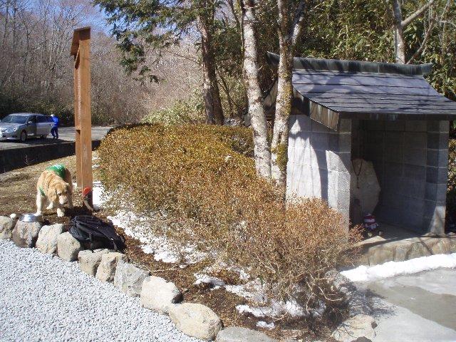 3月26日富士山須山口登山歩道 140