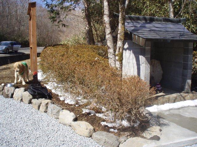 3月26日富士山須山口登山歩道 141