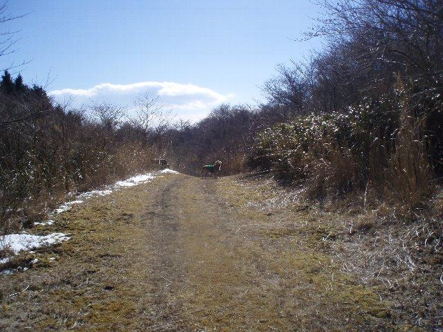 3月26日富士山須山口登山歩道 186