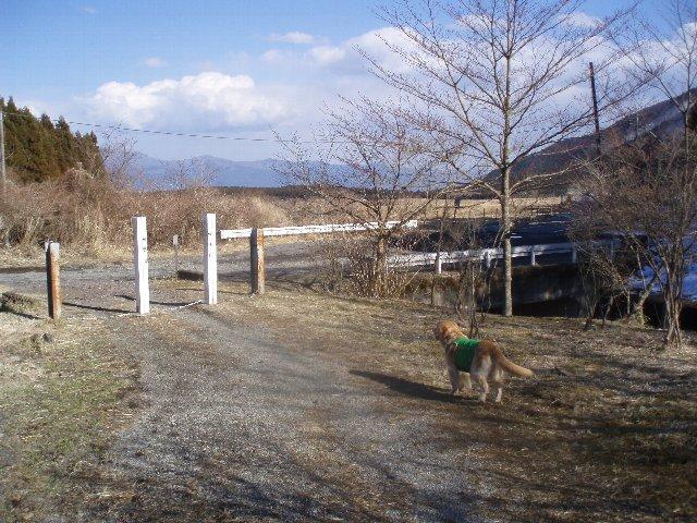 3月26日富士山須山口登山歩道 188