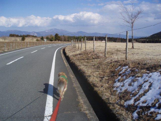 3月26日富士山須山口登山歩道 190