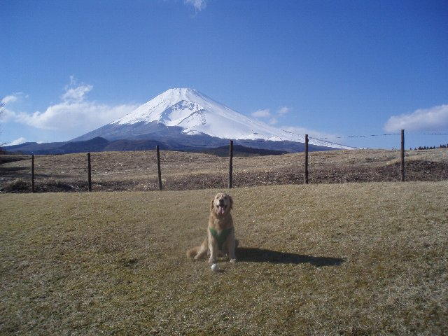 3月26日富士山須山口登山歩道 191