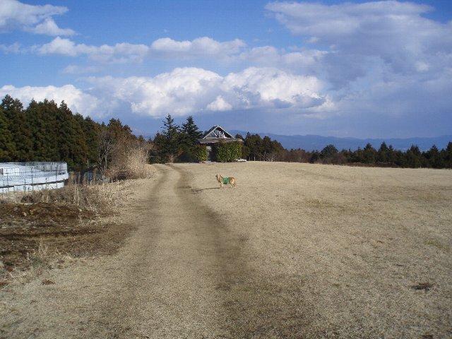 3月26日富士山須山口登山歩道 197