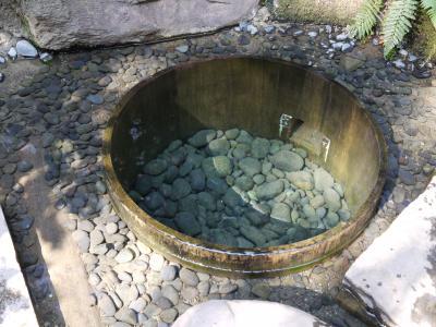 明治神宮 清正の井