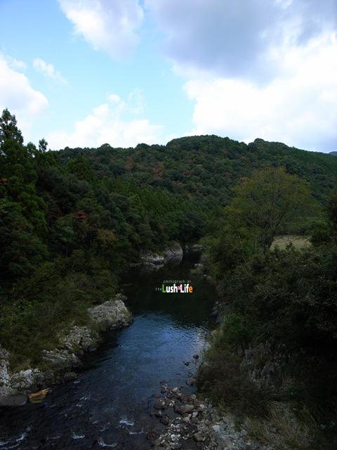 20091106f.jpg