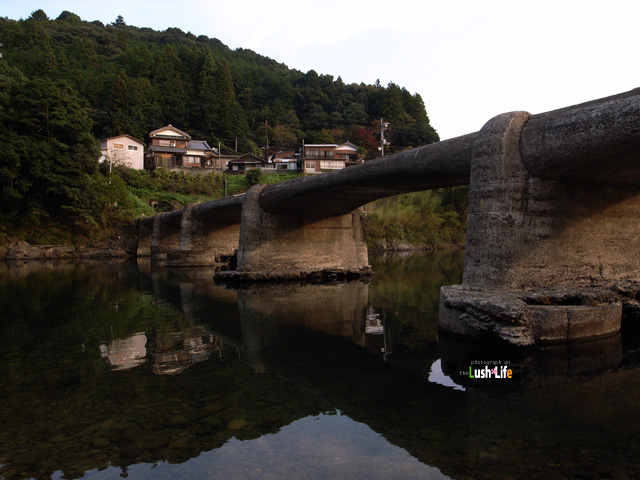 20091106g.jpg