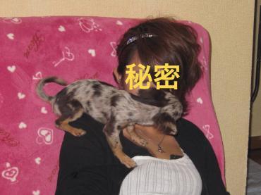 よじよじ_convert_20100918222150