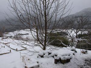 10初の積雪2010冬