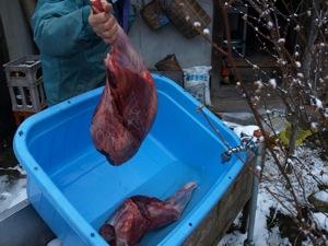 7鹿肉を洗う