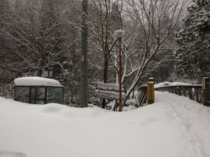 1雪の乙女渓谷入り口