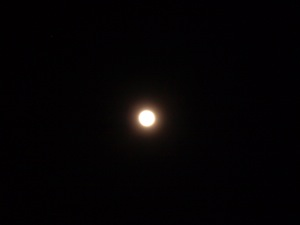 見事な満月20110218
