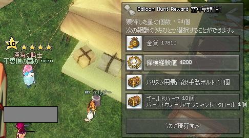 mabinogi_2011_07_06_006.jpg
