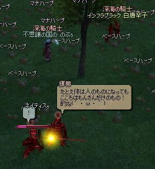 mabinogi_2011_07_13_044.jpg