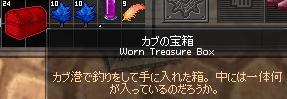 mabinogi_2011_08_05_002.jpg