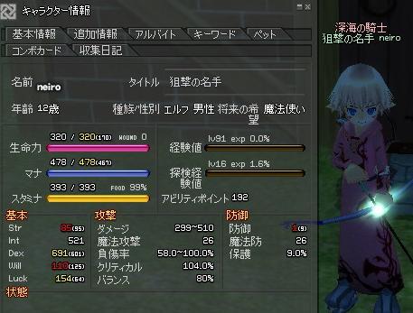 mabinogi_2011_08_14_006.jpg