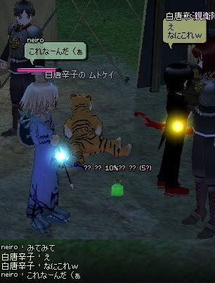 mabinogi_2011_10_15_004.jpg
