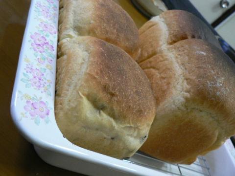 1斤半のパン