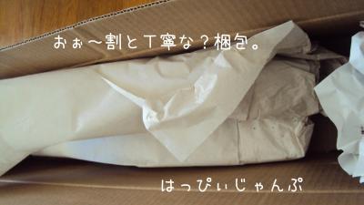 DSC01178_convert_20110607075241.jpg