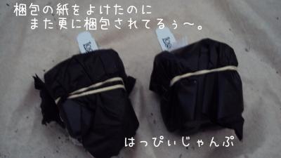DSC01179_convert_20110607075257.jpg