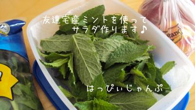 DSC01450_convert_20110612070204.jpg