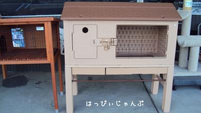 DSC01843_convert_20110620210927.jpg