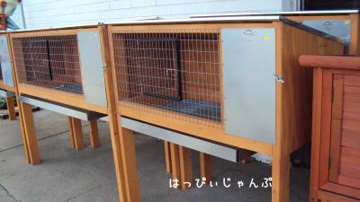 DSC01844_convert_20110620210942.jpg