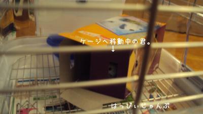 DSC02099_convert_20110624194952.jpg