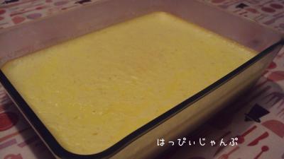 DSC03138_convert_20110708193821.jpg