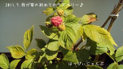 DSC03792_convert_20110718194734.jpg