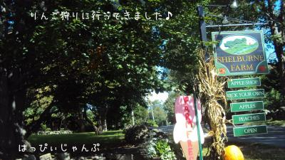 DSC08133_convert_20110918234105.jpg