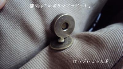 DSC08399_convert_20110924232903.jpg