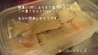 DSC09176_convert_20111010094920.jpg