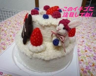 羊毛ケーキ01