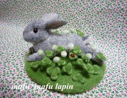 羊毛P1020256