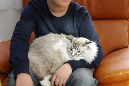 猫使いとムック