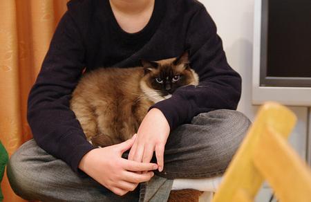 猫使いアンソニー